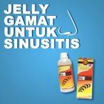 Obat Herbal Sinusitis Jelly Gamat