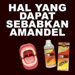 Hal Yang Menyebabkan Amandel Jelly Gamat