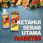 Ketahui Penyebab Utama Diabetes Jelly Gamat