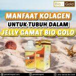 Manfaat Kolagen Untuk Tubuh Dalam Jelly Gamat Bio Gold