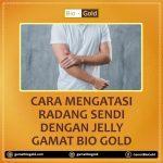 Cara Mengatasi Radang Sendi Dengan Jelly Gamat Bio Gold