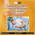 Cara Obati Wasir Dengan Jelly Gamat Bio Gold