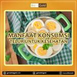 Manfaat Konsumsi Telur Untuk Kesehatan Tubuh