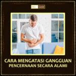 Cara Mengatasi Gangguan Pencernaan Dengan Jelly Gamat Bio Gold